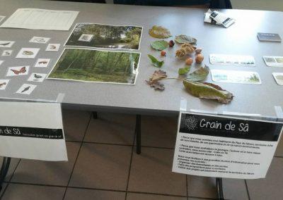 table_jeux_nature_grain_sa
